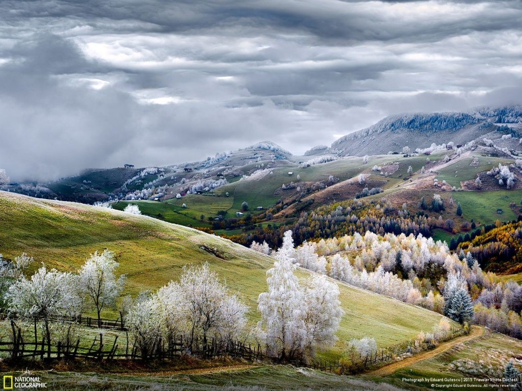 Photo and caption by Eduard Gutescu Romania, land of fairy tales. White frost over Pestera village.