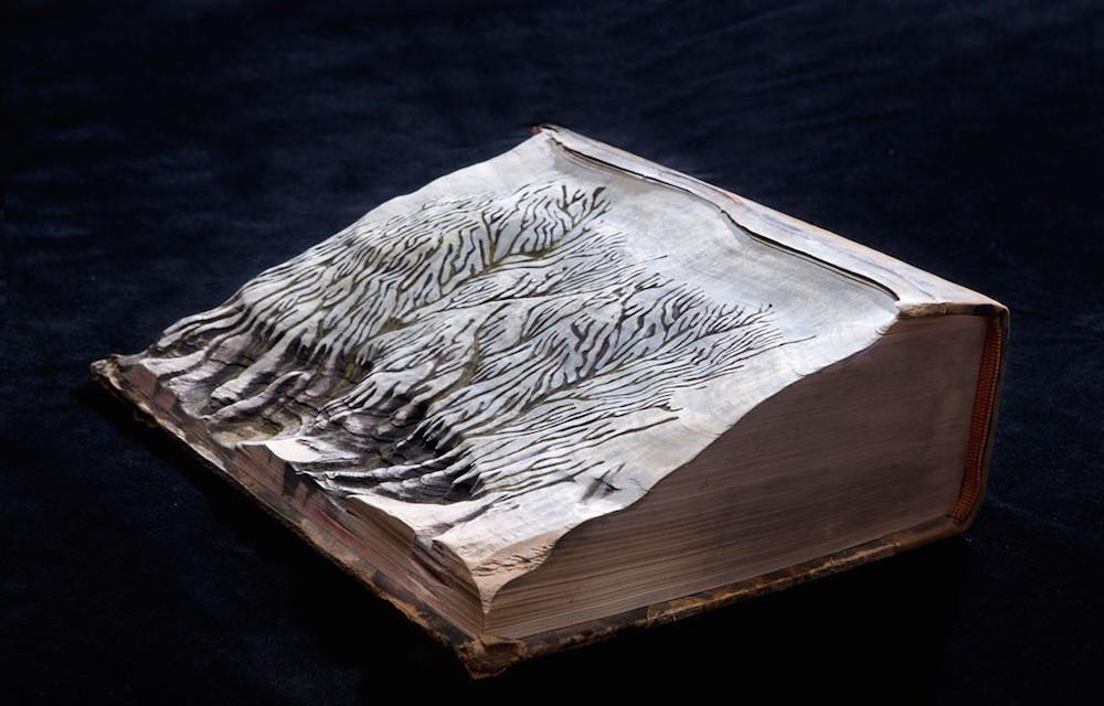 Guy Laramée carved book 7