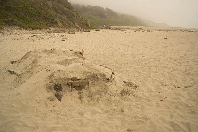 Tunitas Beach Camera