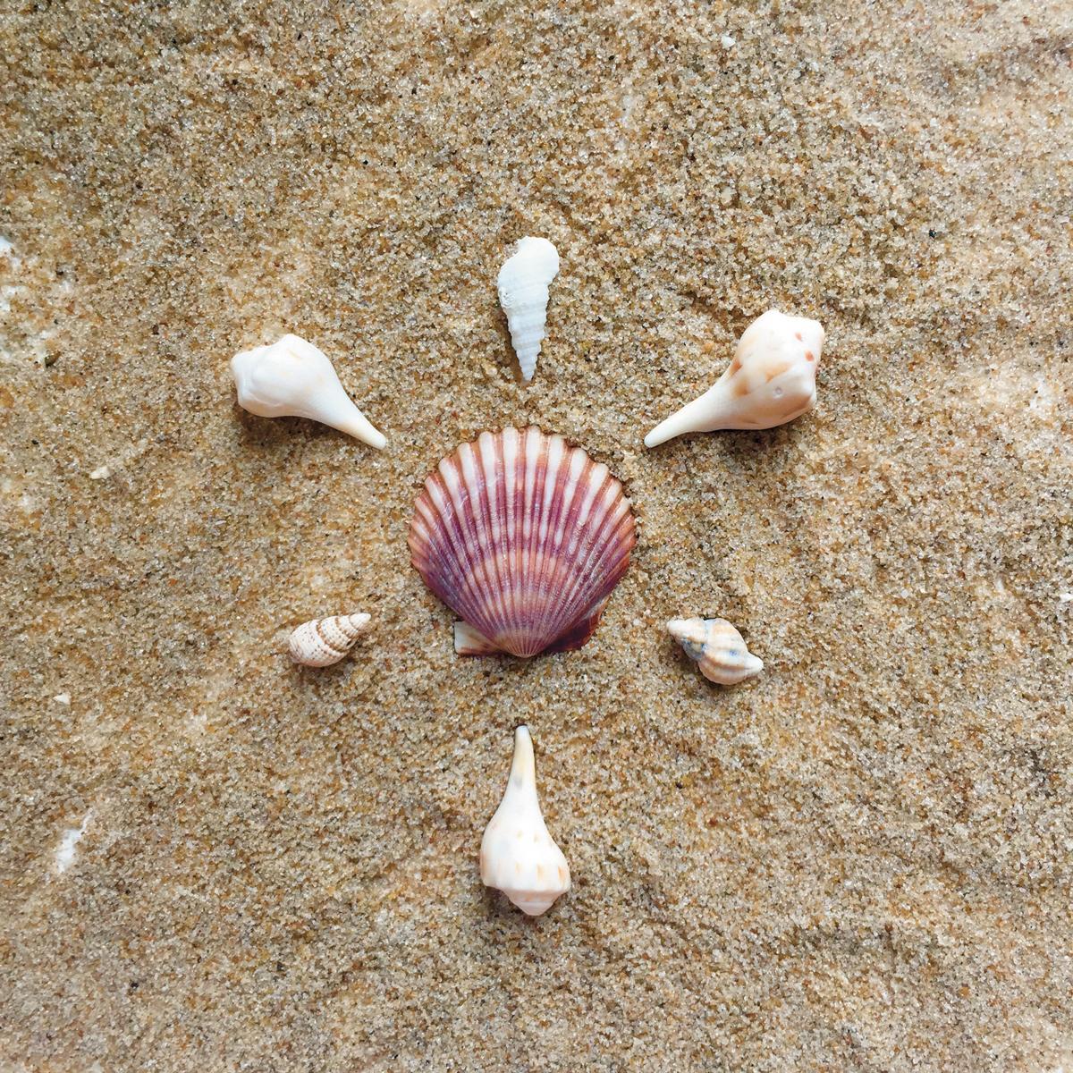 TB13.BeachMandala.4