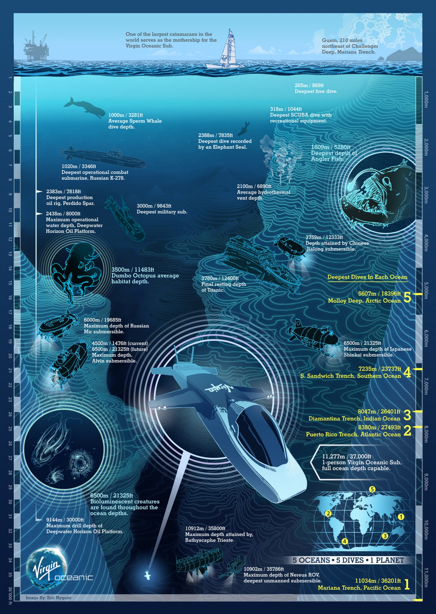 In Honor Of World Ocean Day Here Are The Top Ocean Infographics - Ocean depth map
