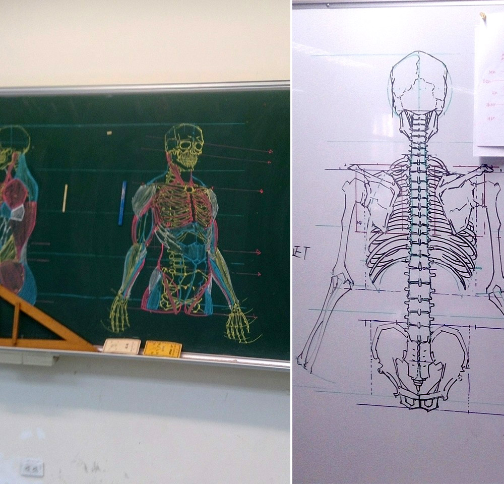 Anatomical Drawings of Skeletons with Chalk, by Chuan-Bin Chung