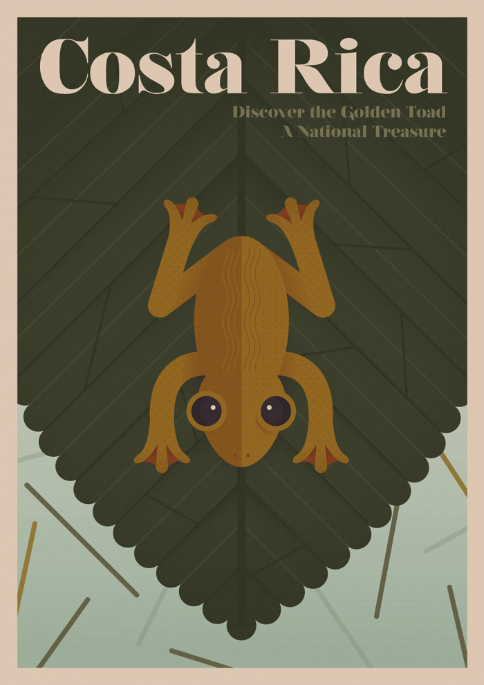 Costa Rica Golden Toad Poster